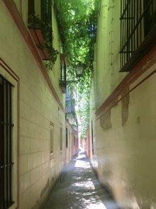 Barrio Santa Cruz in Sevilla